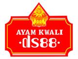Ayam Kwali DS88 Benhil