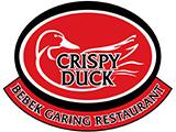 Bebek Garing Crispy Duck